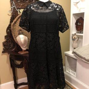 Eloquii - NWT- 24W - Black lace collar dress